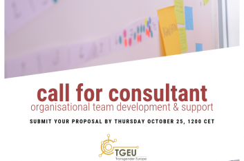 "Blurred background image of post-its on a wall. Overlayed text says ""Call for Consultant - organisational team development & support. Submit your proposal by Thursday October 25 1200 CET"""