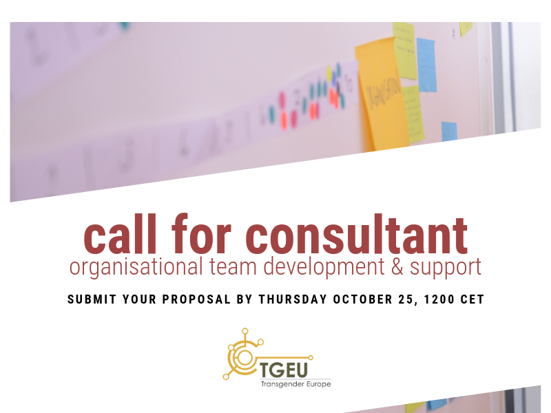 """Blurred background image of post-its on a wall. Overlayed text says """"Call for Consultant - organisational team development & support. Submit your proposal by Thursday October 25 1200 CET"""""""